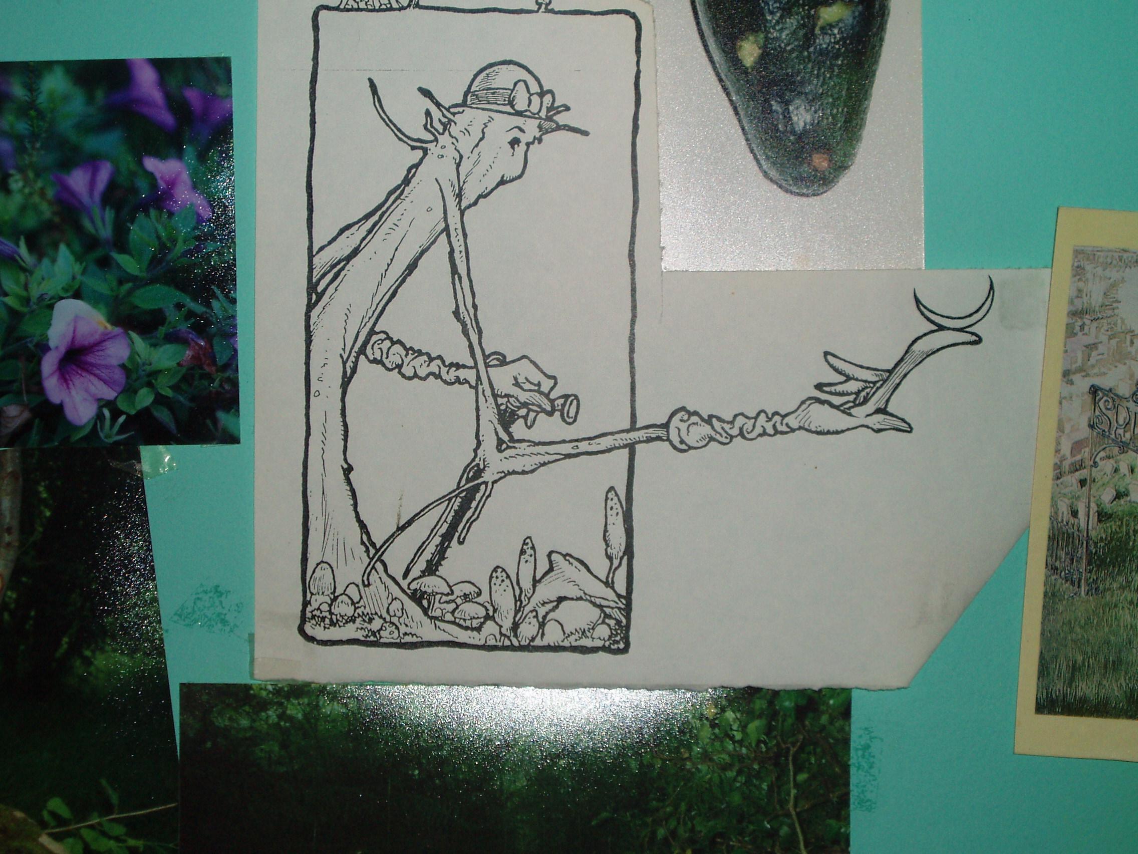 disegni